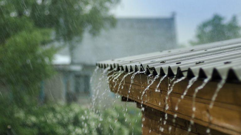 Meteoroloji tarım sektörü için hayati öneme sahip