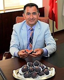 """UYMSİB Başkanı Dr Salih Çalı,  """"İlek incir bahçesi"""" kurma projelerinin Gıda Tarım ve Hayvancılık Bakanlığı tarafından kabul edildiğini söyledi."""