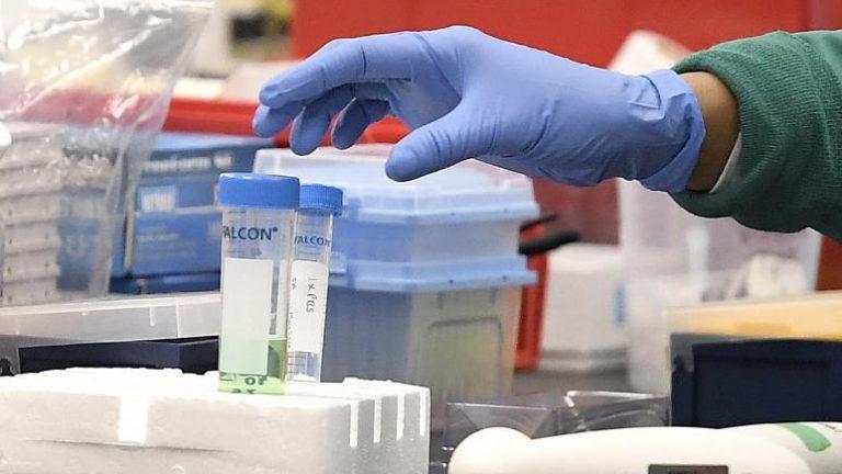 Toplumun yüzde 12'si koronavirüsten korkmuyor