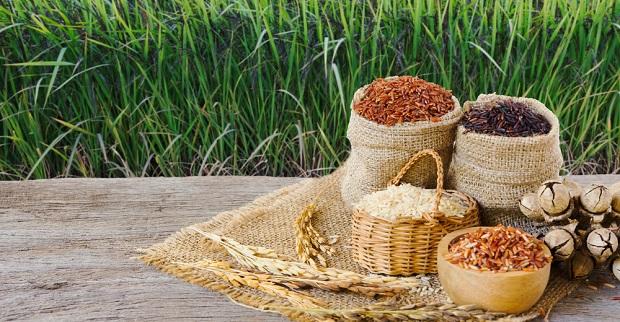 Tahıl üretiminin 2020'de yüzde 8.2 artacağı öngörülüyor