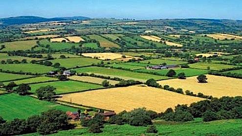 tarımsal arazi