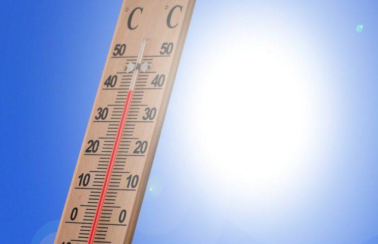 2020'de Türkiye'deki 198 noktada ekstrem sıcaklık rekoru