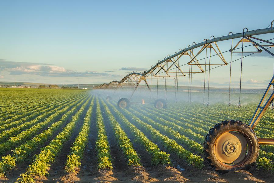 <strong>Döngüsel bir ekonomi hassas tarımla mümkün</strong>